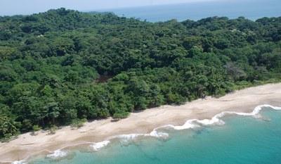 Pear Islands   Paradise Beach